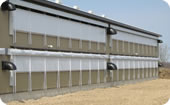 Broiler Chickens Barn System