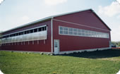 Riding / Schooling Area - Equine Dairy Housing